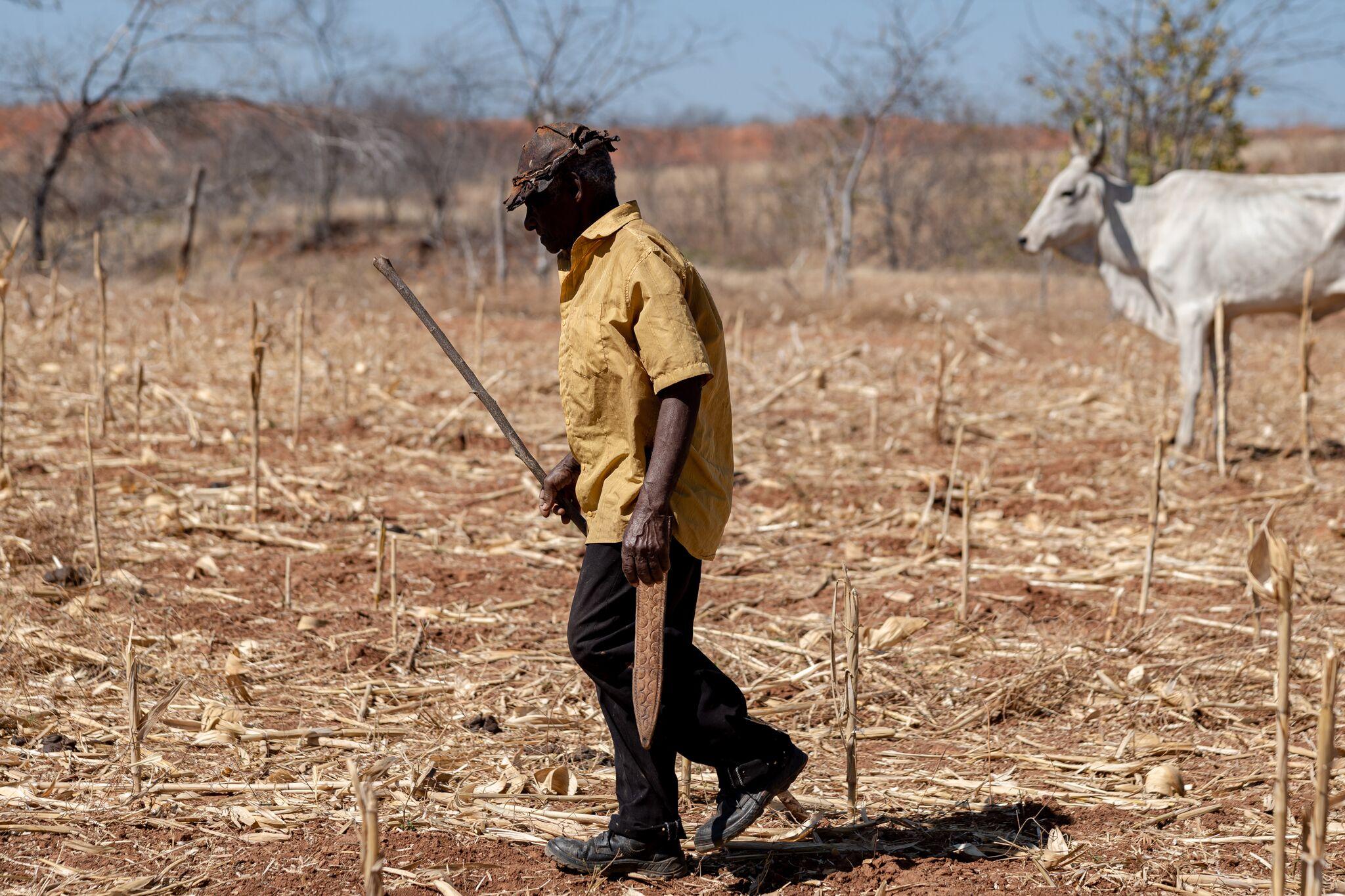 Zé Capenga e seu inseparável instrumento de trabalho, o facão. Ele vive da pequena roça, que só dá milho e mandioca, e de 30 cabeças de gado. Foto de Márcio Pimenta