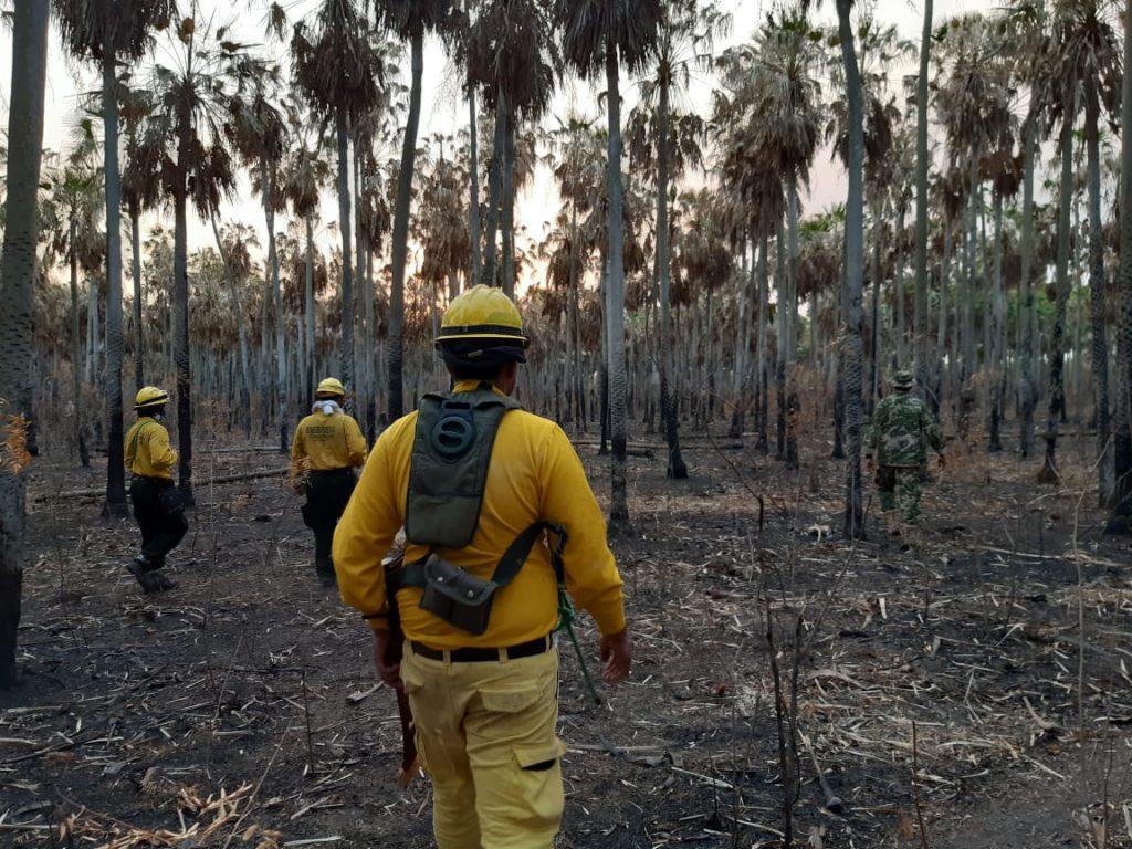 Bombeiros em área de queimada no Paraguai (Foto da Secretaria de Emergência Nacional