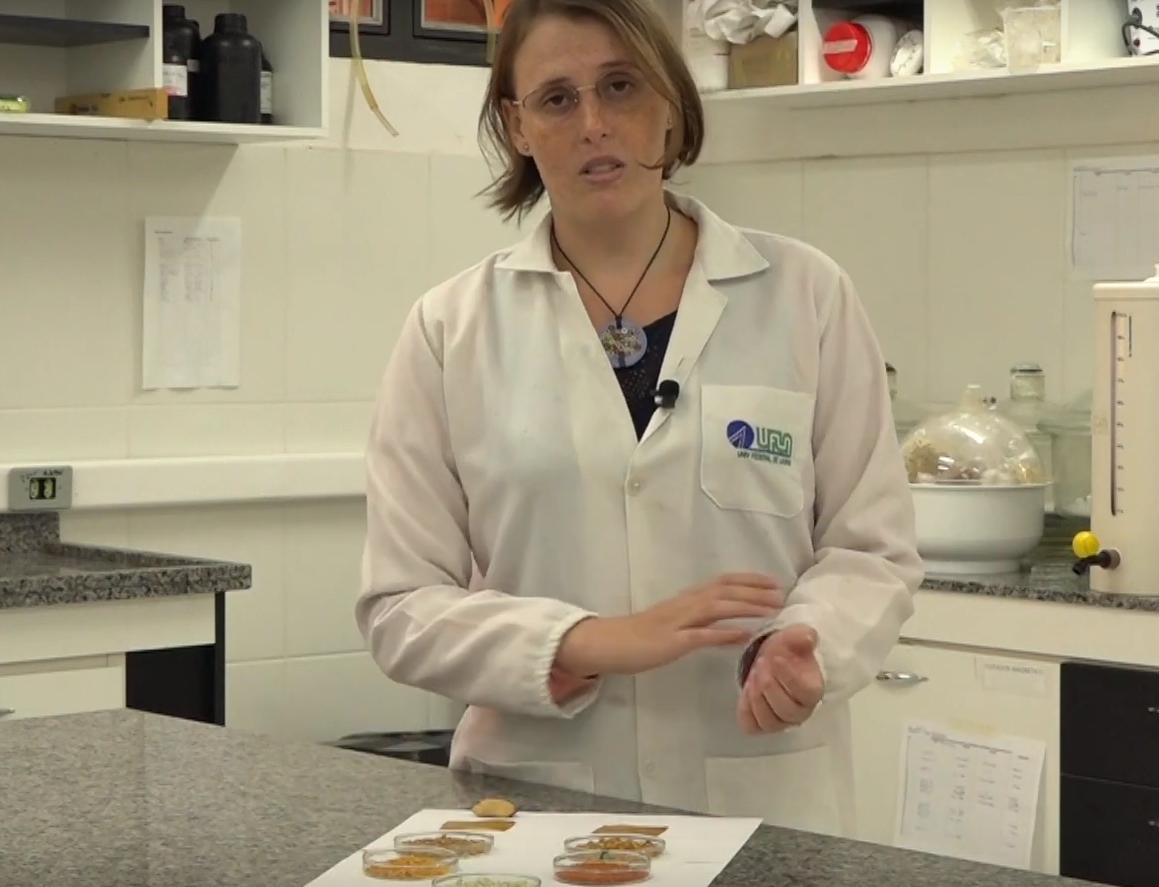 """A pesquisadora Laura Fonseca no Laboratório de Embalagens do Departamento de Ciência dos Alimentos: """"Como a casca do tomate é um resíduo da indústria de molho de tomate, nós queríamos reaproveitar"""" (Reprodução: Núcleo de Divulgação Científica da UFLA)"""