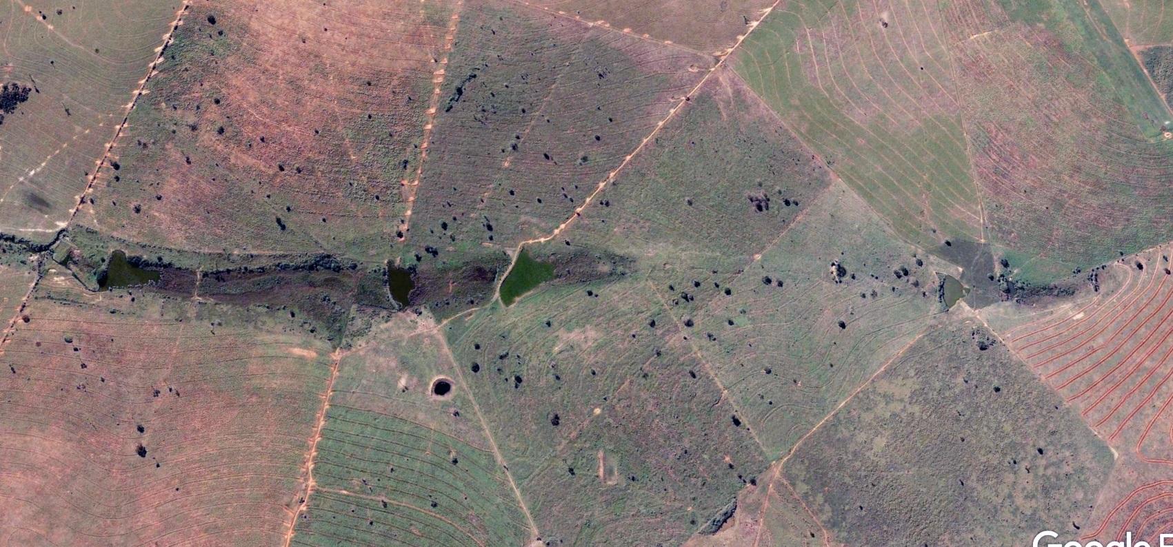 Áreas de Preservação Permanentes (APPs) da Fazenda São Geraldo, em 2009. Foto Acervo pessoal/José Arnaldo Favaretto