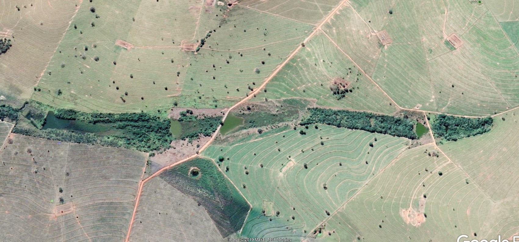 Áreas de Preservação Permanentes (APPs) da Fazenda São Geraldo, dez anos depois, em 2019. Foto Acervo pessoal/José Arnaldo Favaretto