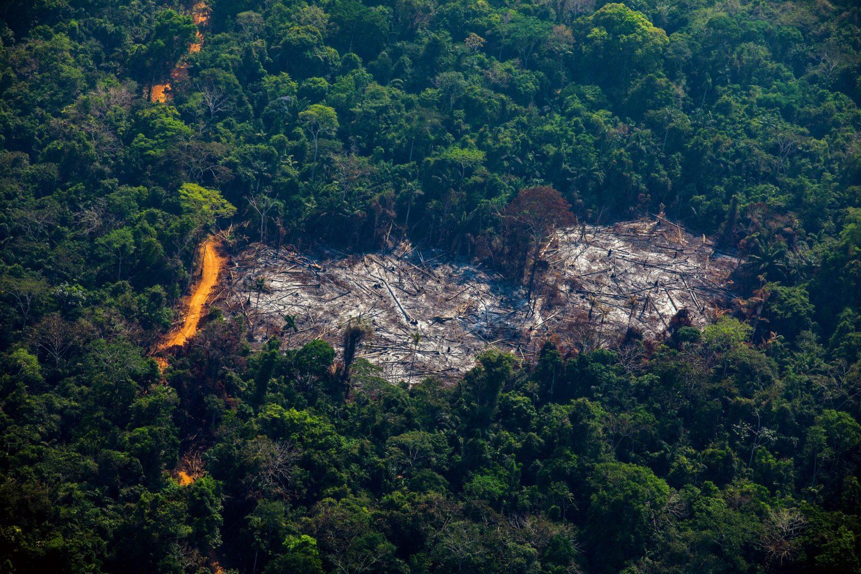 Área desmatada em Altamira, no Pará, estado líder em emissões de gases do efeito estufa: relatório mostra desmatamento como vilão das emissões (Foto: João Laet/AFP)