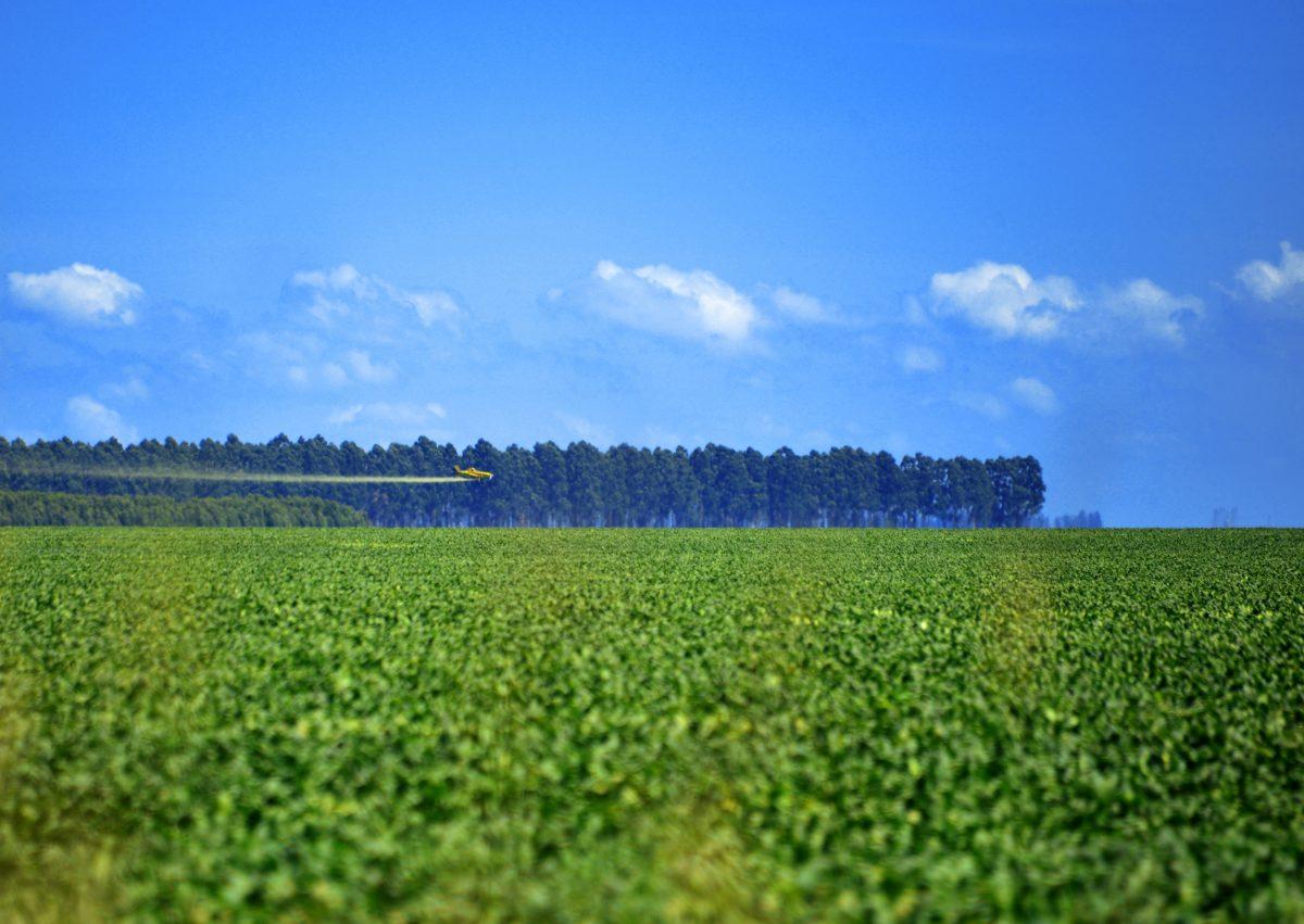Aviao sobrevoando fazenda de soja para jogar agrotoxico. Foto de Mirian Fichtner