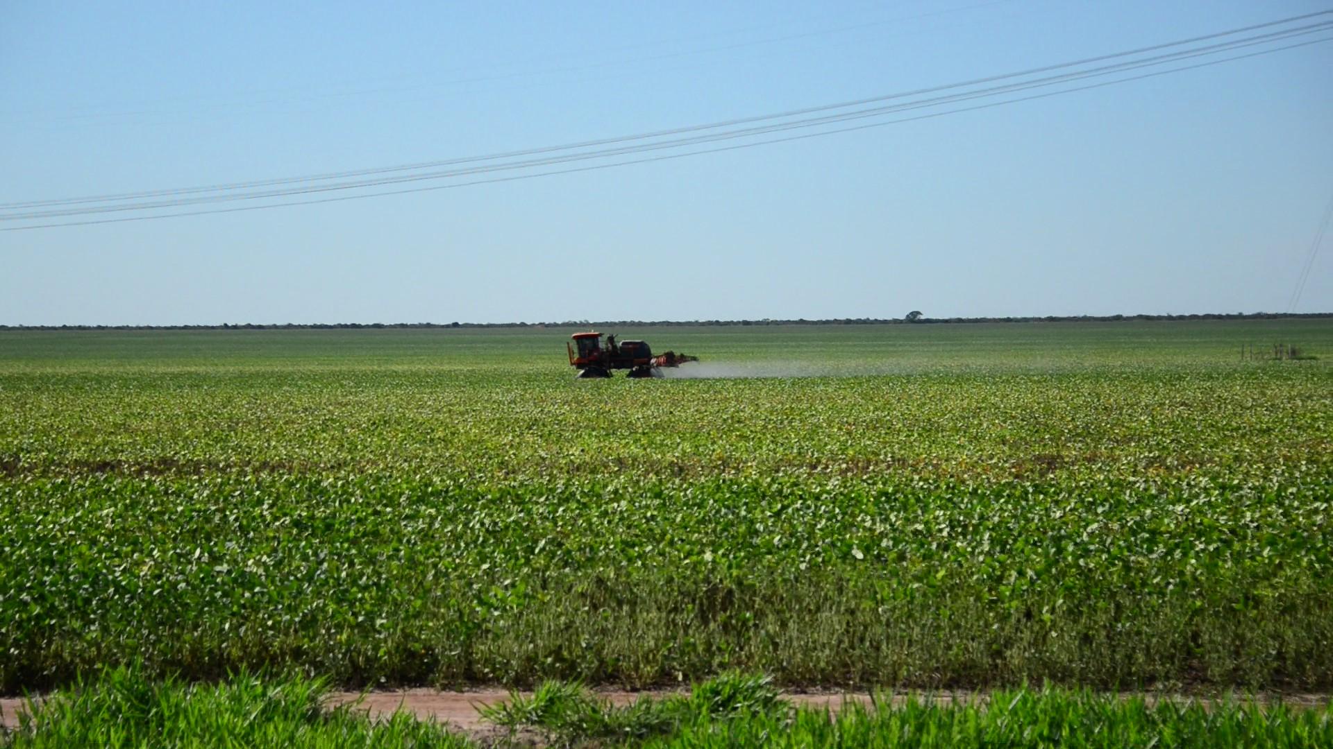 Fazenda de soja nos arredores de Correntina: : agronegócio impactado pela mudança climática. Foto de Mirian Fichtner