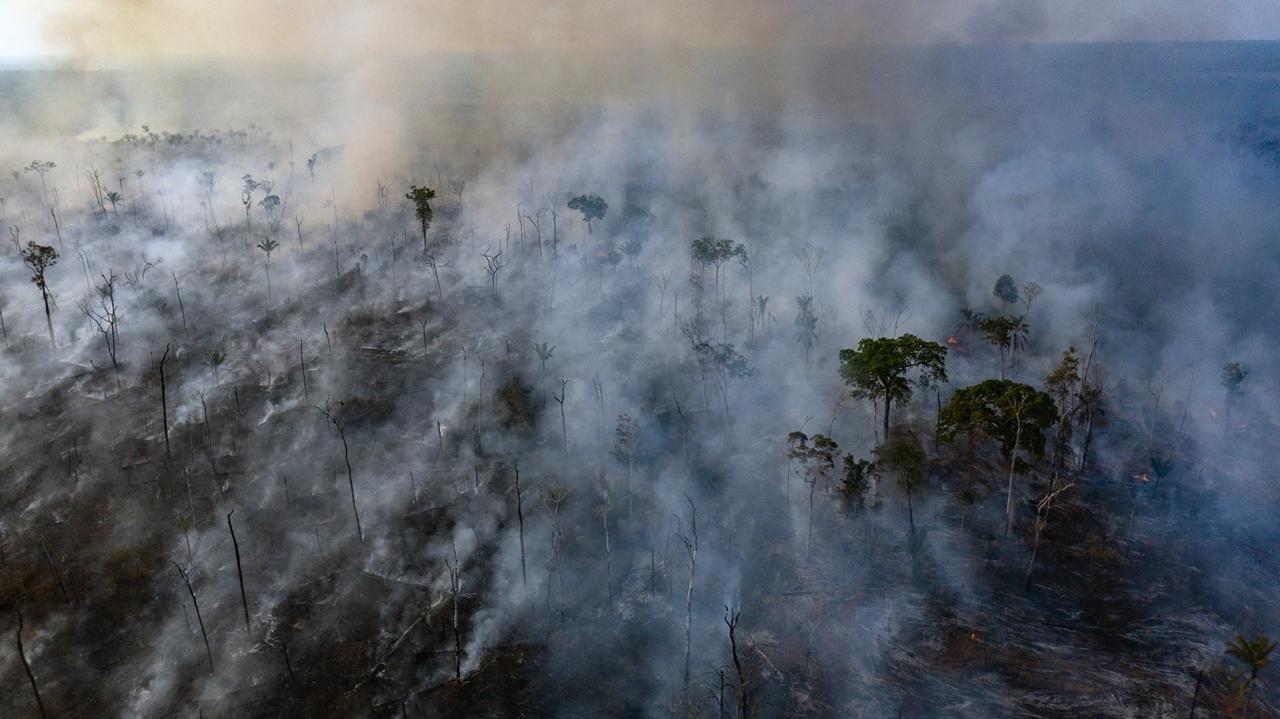 Imagem aérea de uma queimada no Mato Grasso, dentro de um território indígena. Foto Marizilda Cruppe/Anistia Internacional