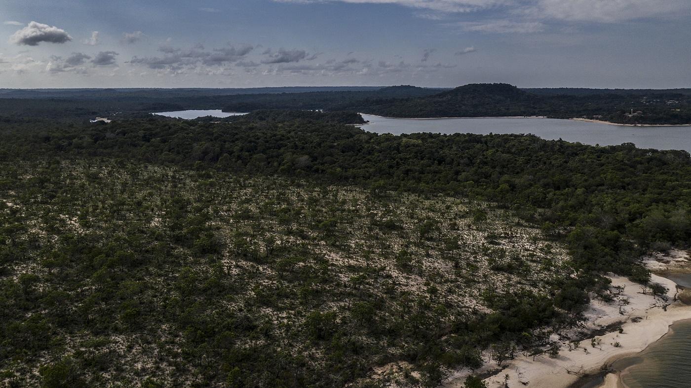Área de Proteção Ambiental de Alter do Chão, nas margens do Lago Verde, onde ocorreu um incêndio de grandes proporções em setembro de 2019. Foto Marizilda Cruppe.