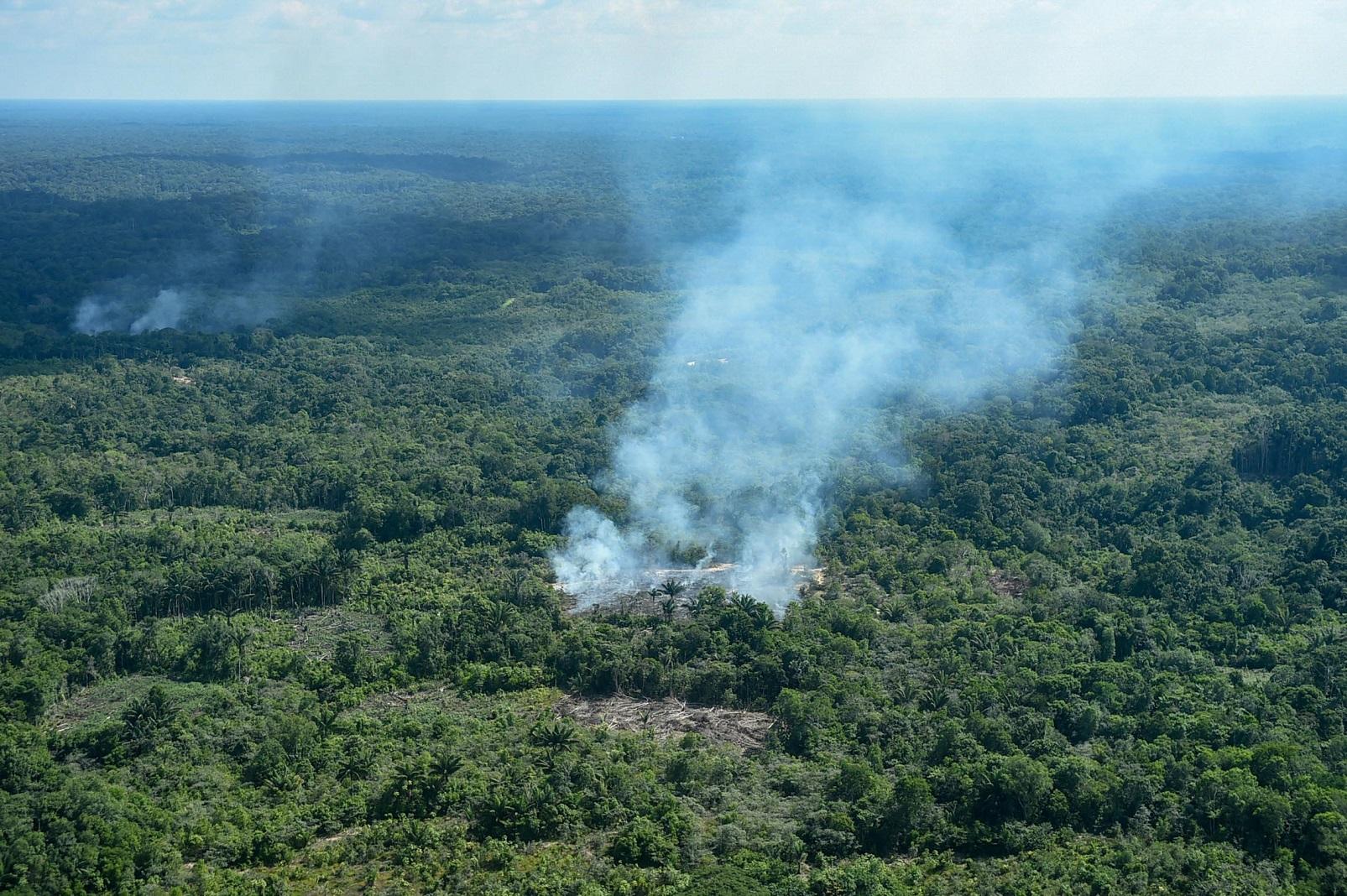 Foco de incêndio na floresta em São Gabriel da Cachoeira. Foto Chico Batata/DPA