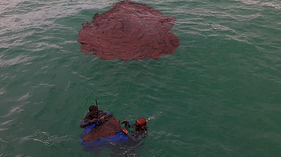 Mergulhadores da Marinha retiram óleo do mar no litoral de Pernambuco: pesquisa da UFSCar testou mistura de cobalto e bagaço de cana para remoção do petróleo da água (Foto: MMA/Fotos Públicas)