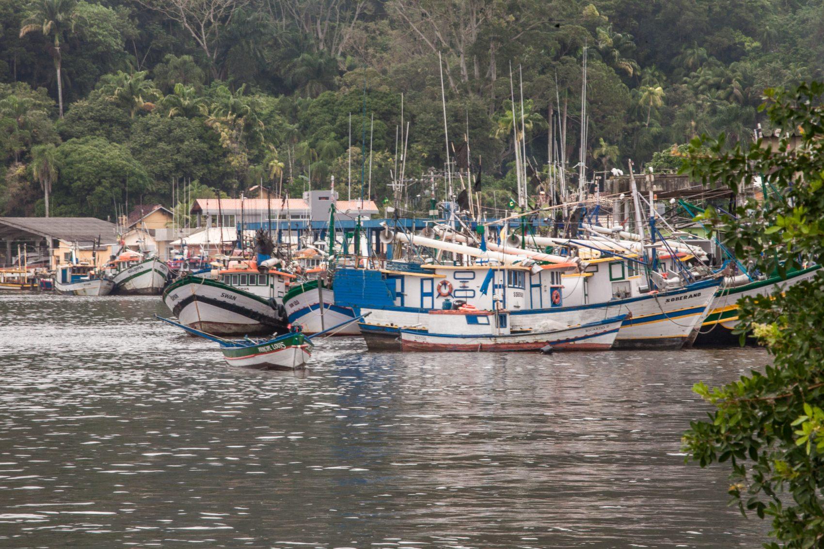 Barcos de pescadores em Cananeia: pesca artesanal é a base da economia da cidade de 12 mil habitantes no extremo sul do litoral paulista (Foto: Caio Ferrari)