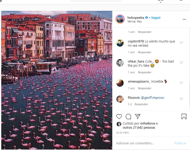 Flamingos ocupam canal de Veneza: imagem totalmente falsa espalhada pelas redes sociais (Reprodução)