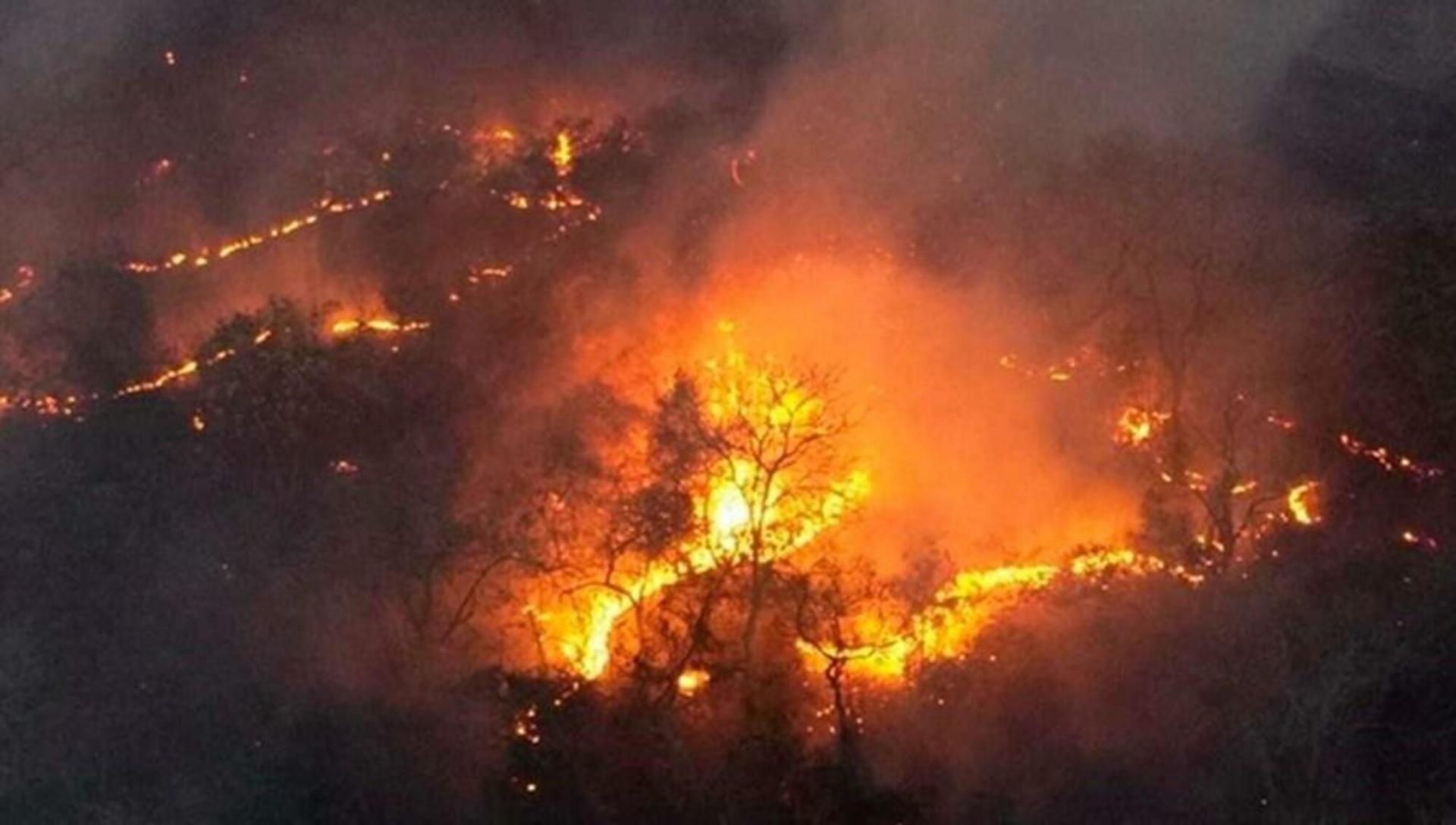 Incêndio em Mato Grosso do Sul: com estiagem prolongada, queimadas batem recorde no Pantanal (Foto: Divulgação/PrevFogo)