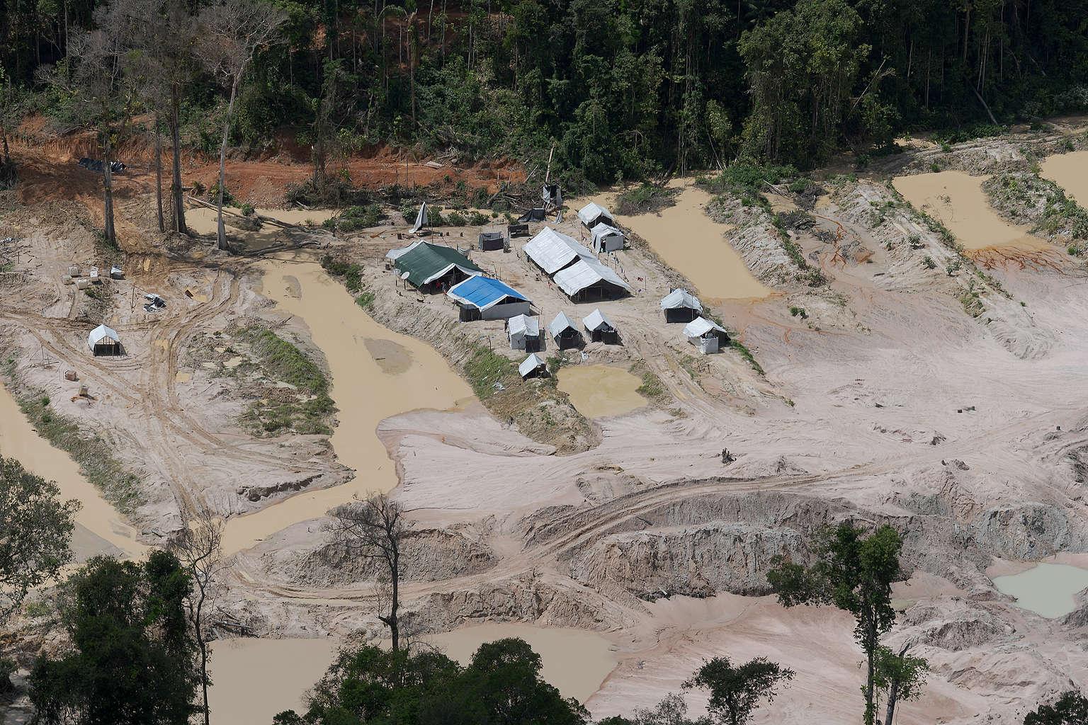 Garimpo ilegal na terra indígena Munduruku no sudoeste do Pará: indígenas pedem socorro ao MPF e pedem operação para retirada dos garimpeiros (Foto: Marcos Amend/Greenpeace)