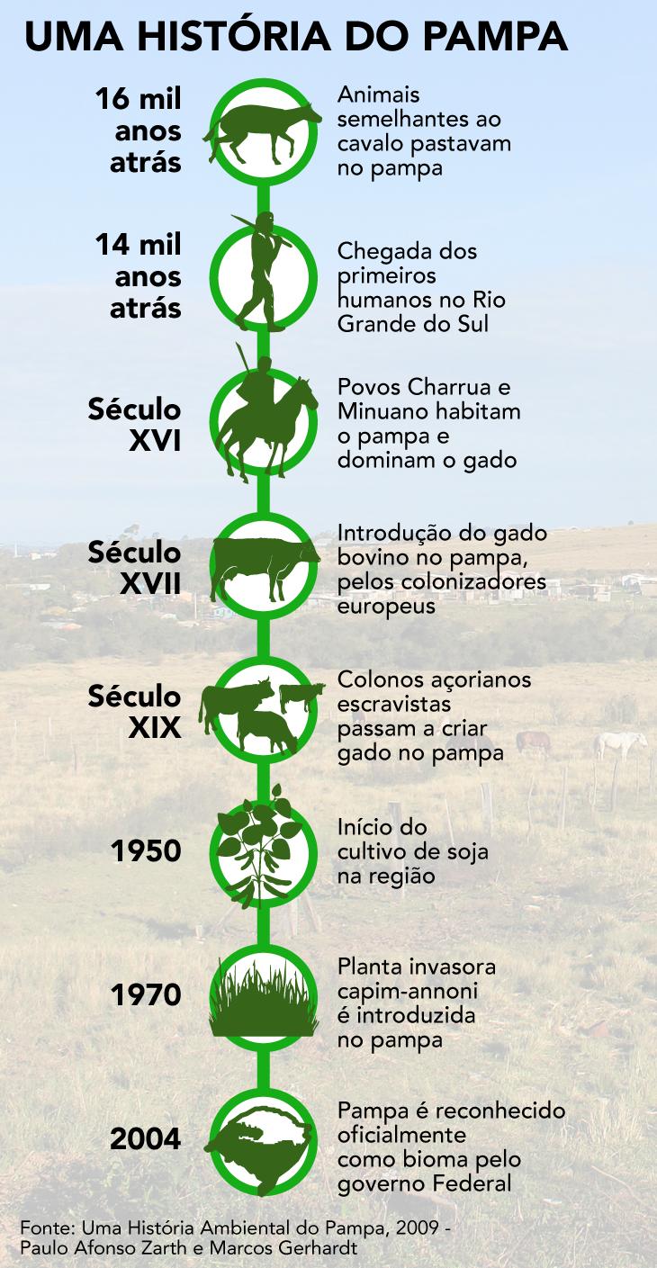 linha do tempo Pampa
