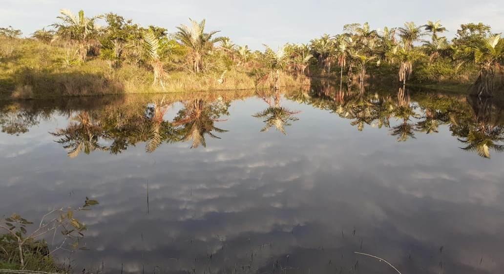 Lago na aldeia Pataxó: proximidade com o ponto onde os portugueses iniciaram a invasão do Brasil. Foto de Tamikuã Pataxó