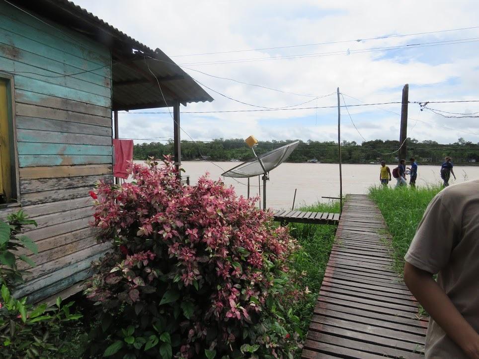 No Arquipélago do Bailique os moradores vivem basicamente da pesca e da extração do açaí. Foto Amélia Gonzalez