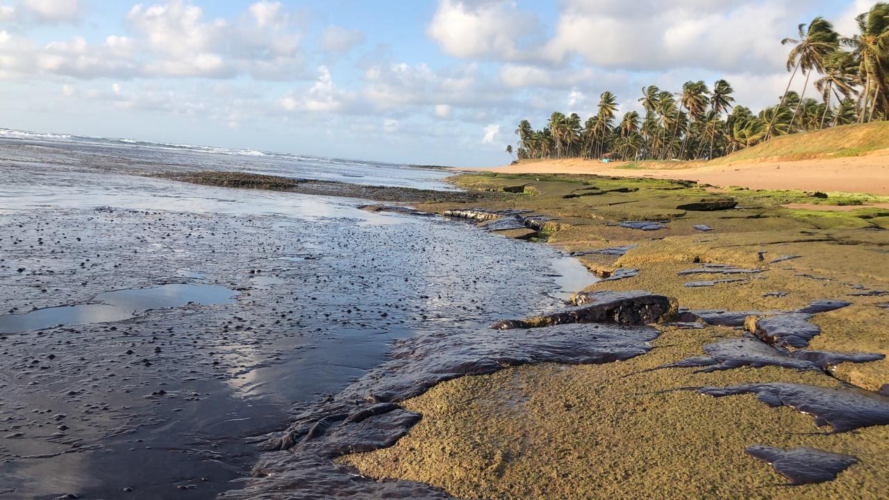 Praia do Forte, destino turístico no litoral baiano, deserta e coberta de óleo em outubro: impacto nos municípios dependentes do turismo (Foto: Instituto Bioma Brasil/Fotos Públicas)