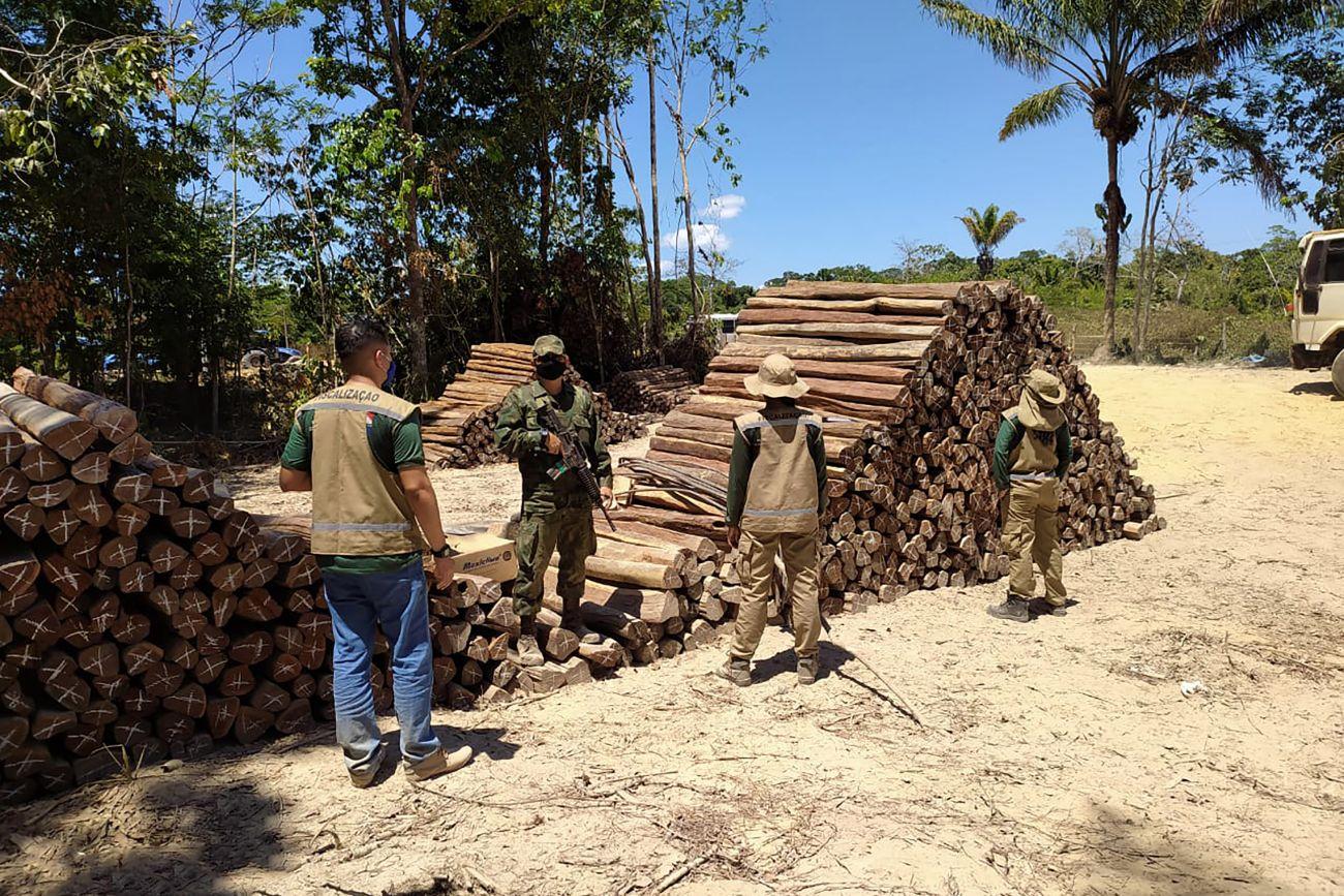 Operação contra madeireiras ilegais da PM e da Secretaria de Meio Ambiente do Pará: desmatamento cresceu 30% na Amazônia Legal em 2021 (Foto: Agência Pará - 10/08/2020)
