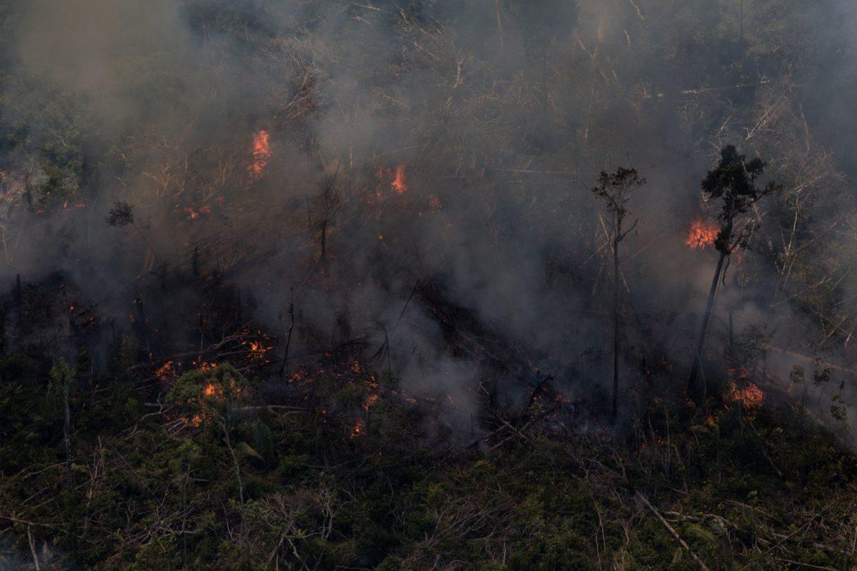 Questão climática: queimada na Amazônia