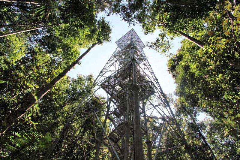 Uma das maiores atrações do museu é a torre de observação que tem 242 degraus e fica a 42 metros de altura. Foto Divulgação Musa/Março2021