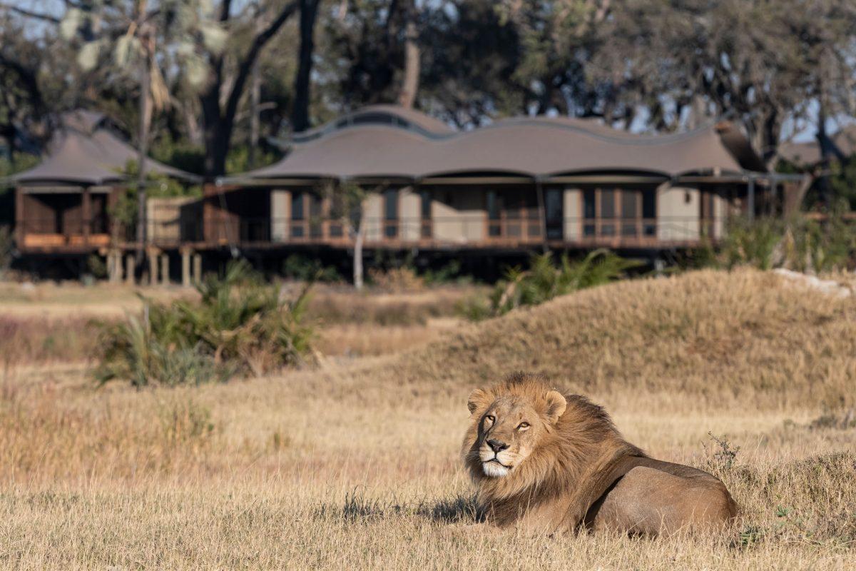 Hotelaria sustentável: Xigera Safari Lodge