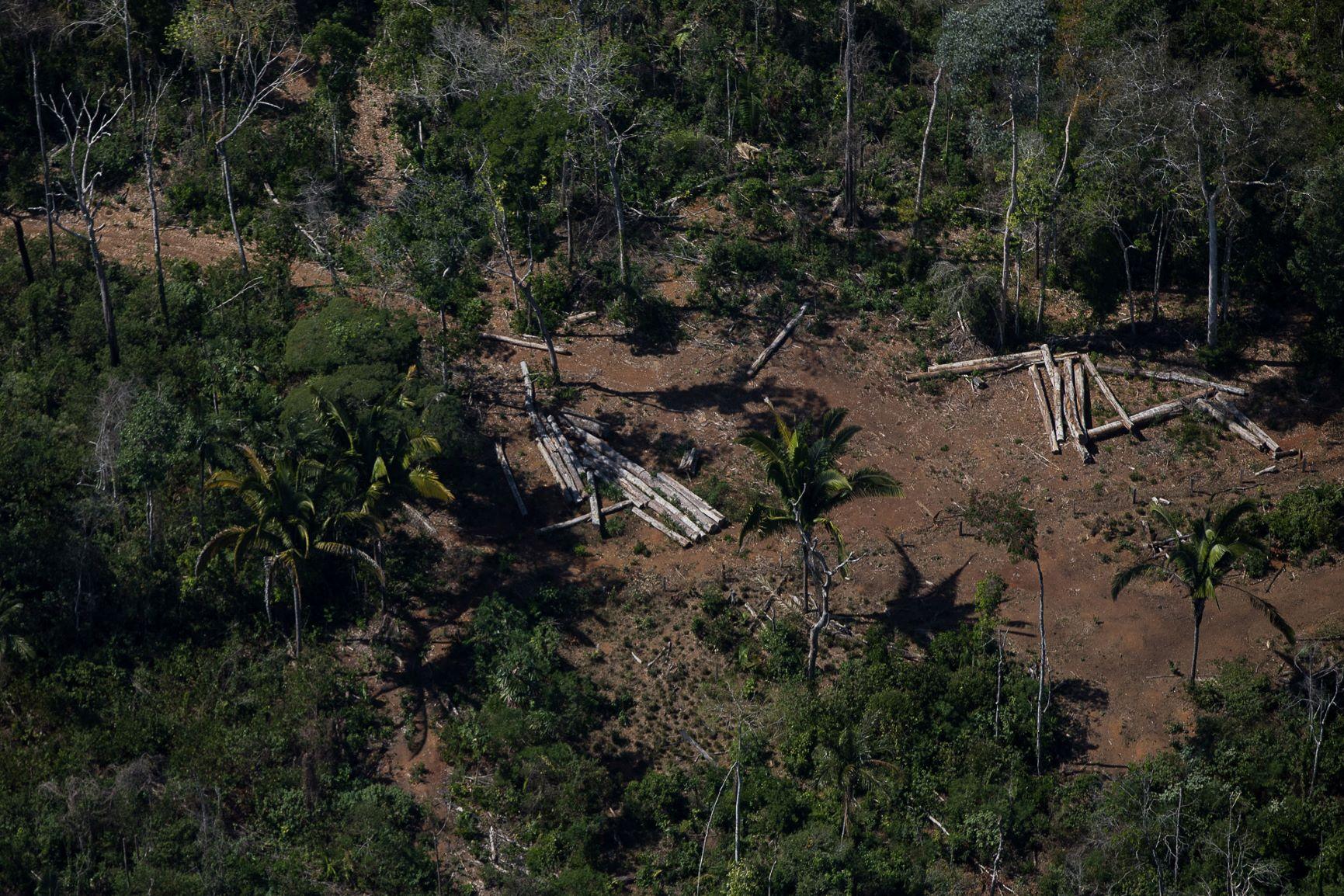Área desmatada perto de unidade de conservação em Rondônia: legalização de ocupações ilegais (Foto: Bruno Kelly/Amazônia Real - 07/08/2020)