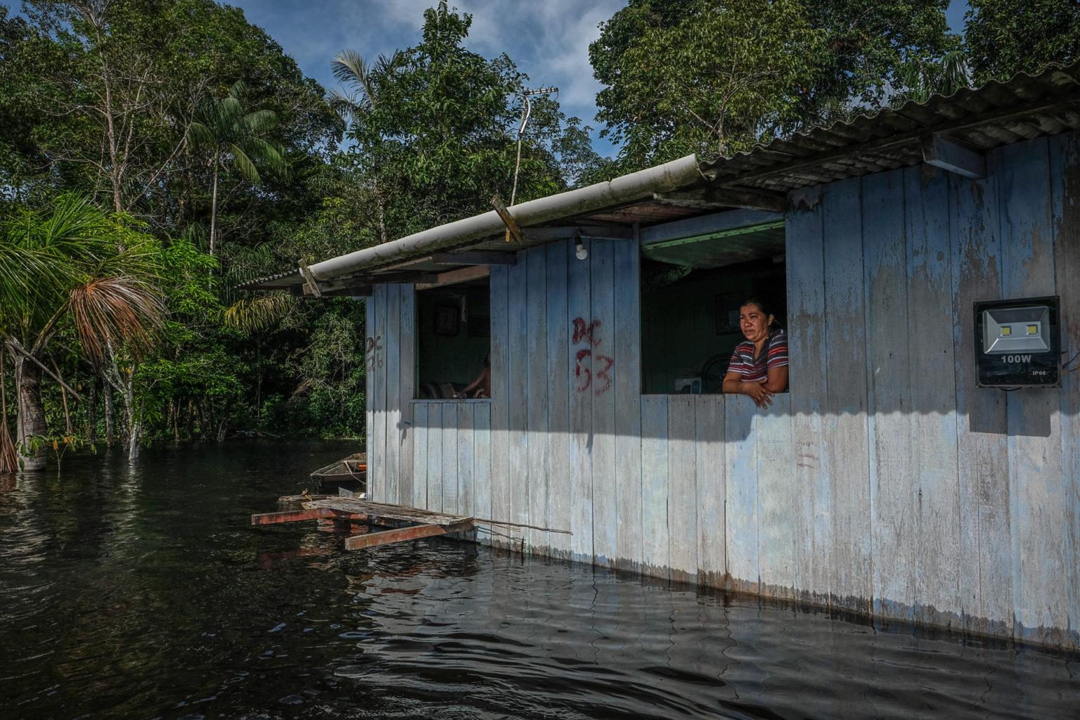 Na comunidade do Mainã, dona Kátia Vasconcelos observa a subida das águas: animais e plantações perdidas na zona rural de Manaus (Foto: Alberto César Araújo/Amazônia Real - 24/05/2021)