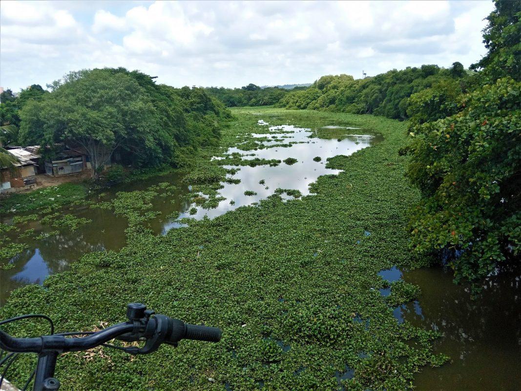 Rio Capibaribe: onde começa a jornada de 170km de bicicleta pelo Recife | Foto de Victor Moura