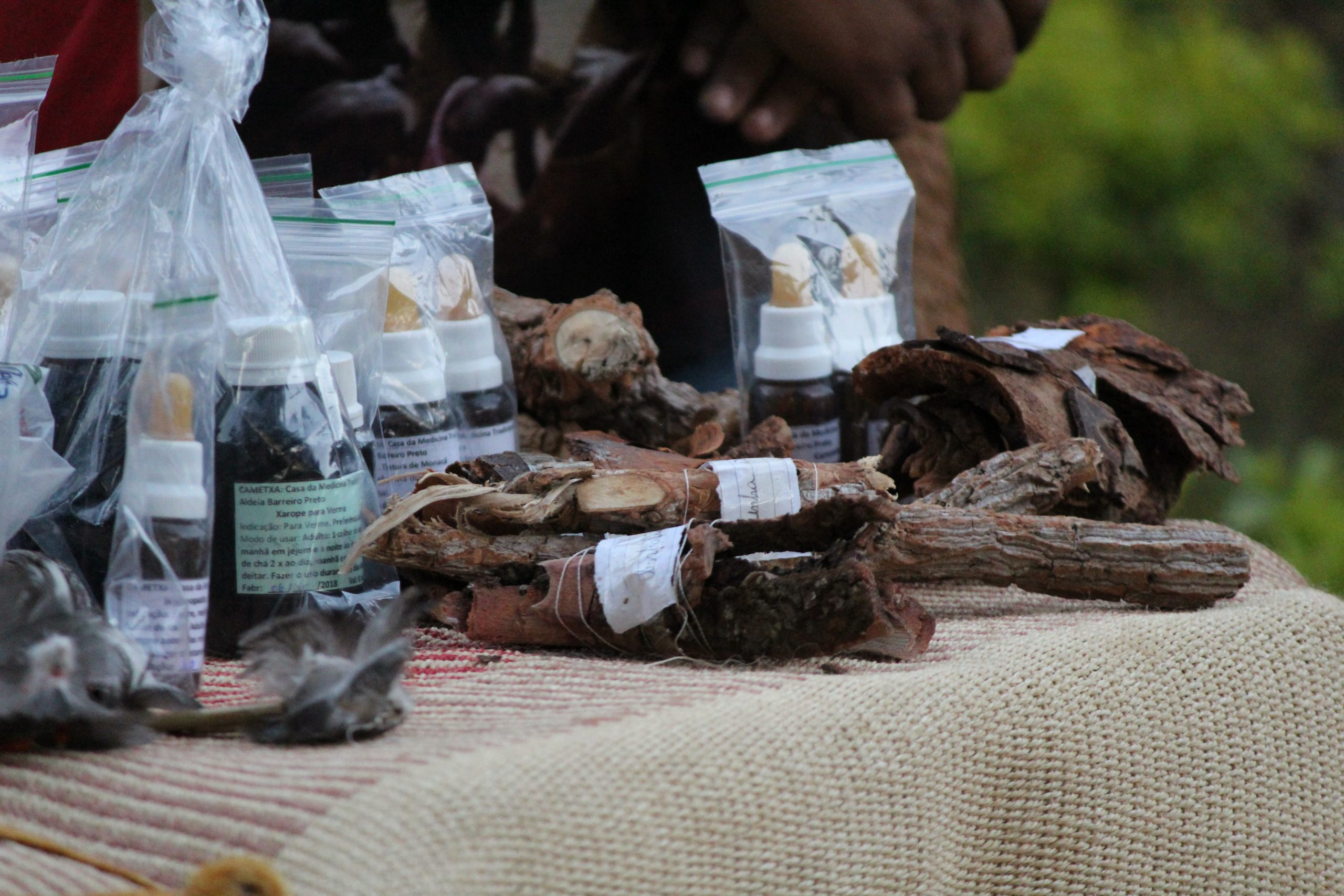 Raízes do Cerrado e remédios tradicionais. Foto Ludmila Almeida