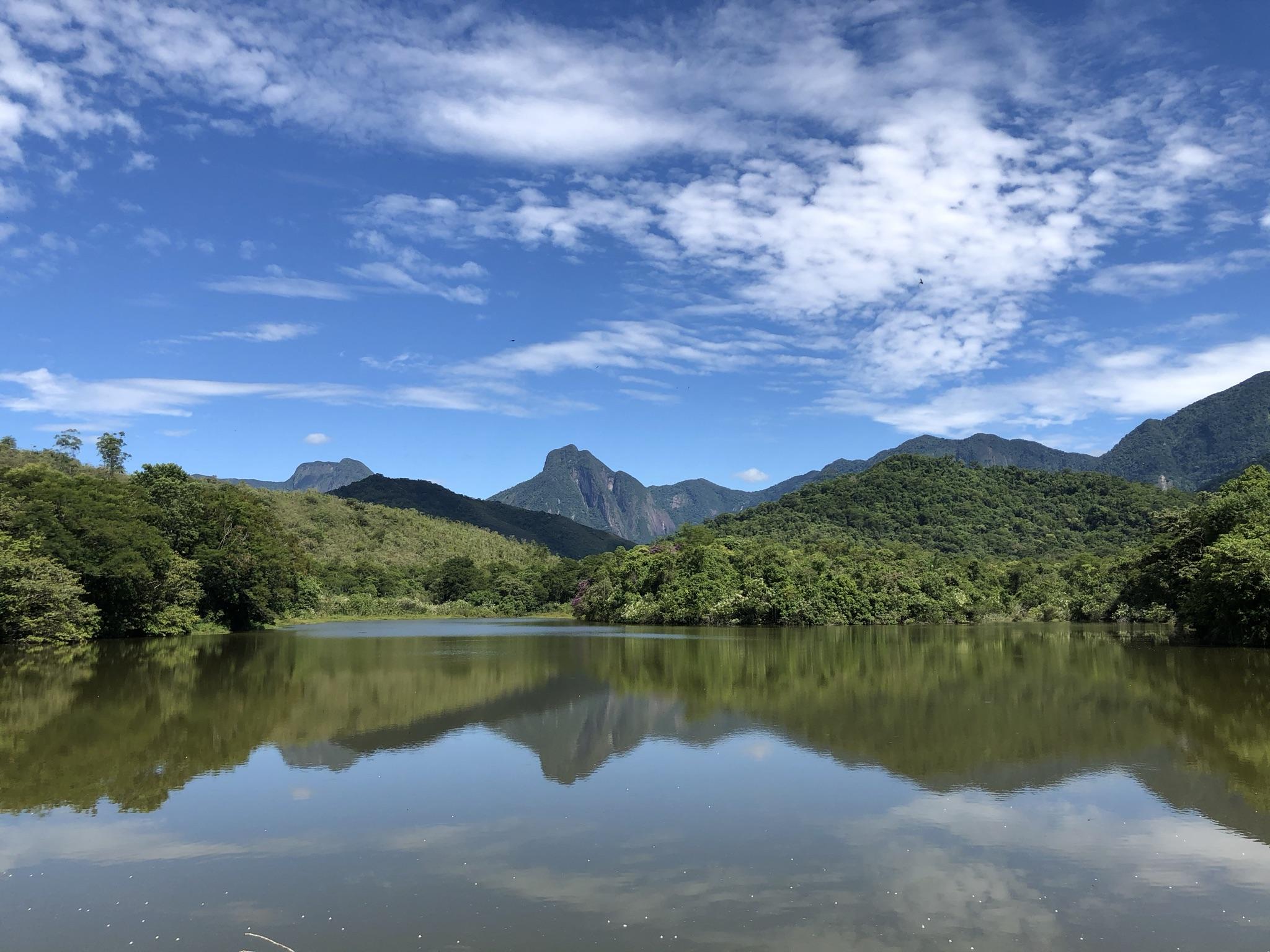 Reserva Ecológica de Guapiaçu, em Cachoeiras de Macacu (RJ): restauração da Mata Atlântica. Foto Tatiana Horta