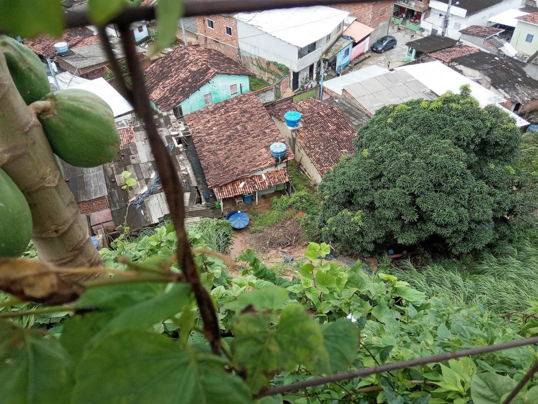 Vista do Alto Nova Olinda