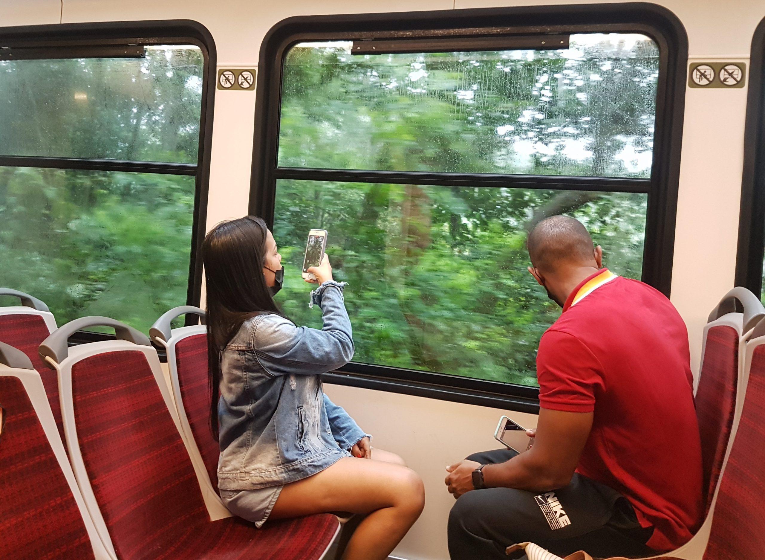 Turistas no Trem do Corcovado, inaugurado 47 anos do monumento ao Cristo Redentor: linha férrea por dentro do verde exuberante da Mata Atlântica (Foto: Oscar Valporto)
