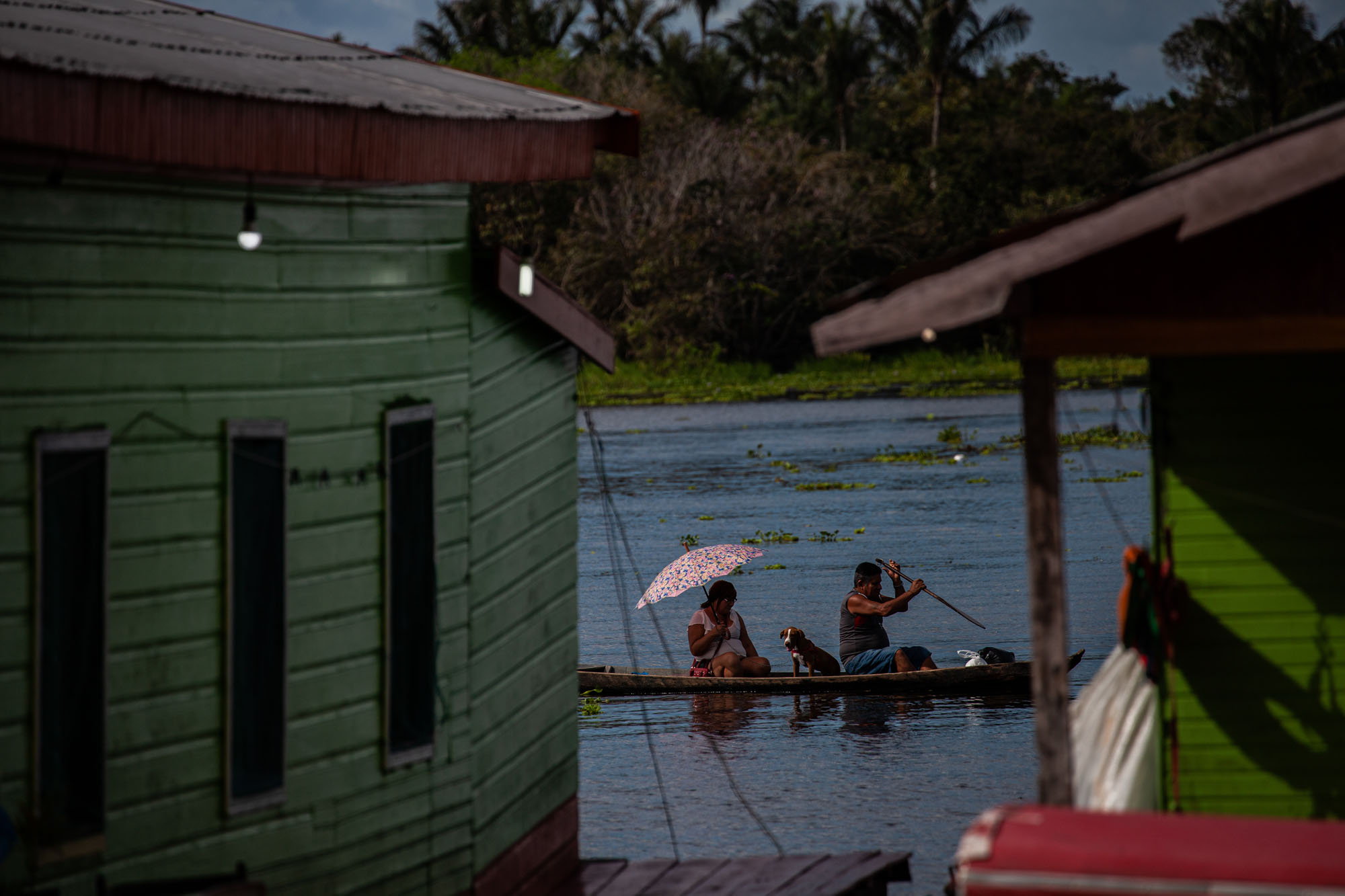 Em Iranduba (AM), família de ribeirinhos navega o rio Negro próximo da vila do Cacau Pirêra: cheia do Amazonas e seus afluentes ameaçam comunidades (Foto: Raphael Alves/Amazônia Real