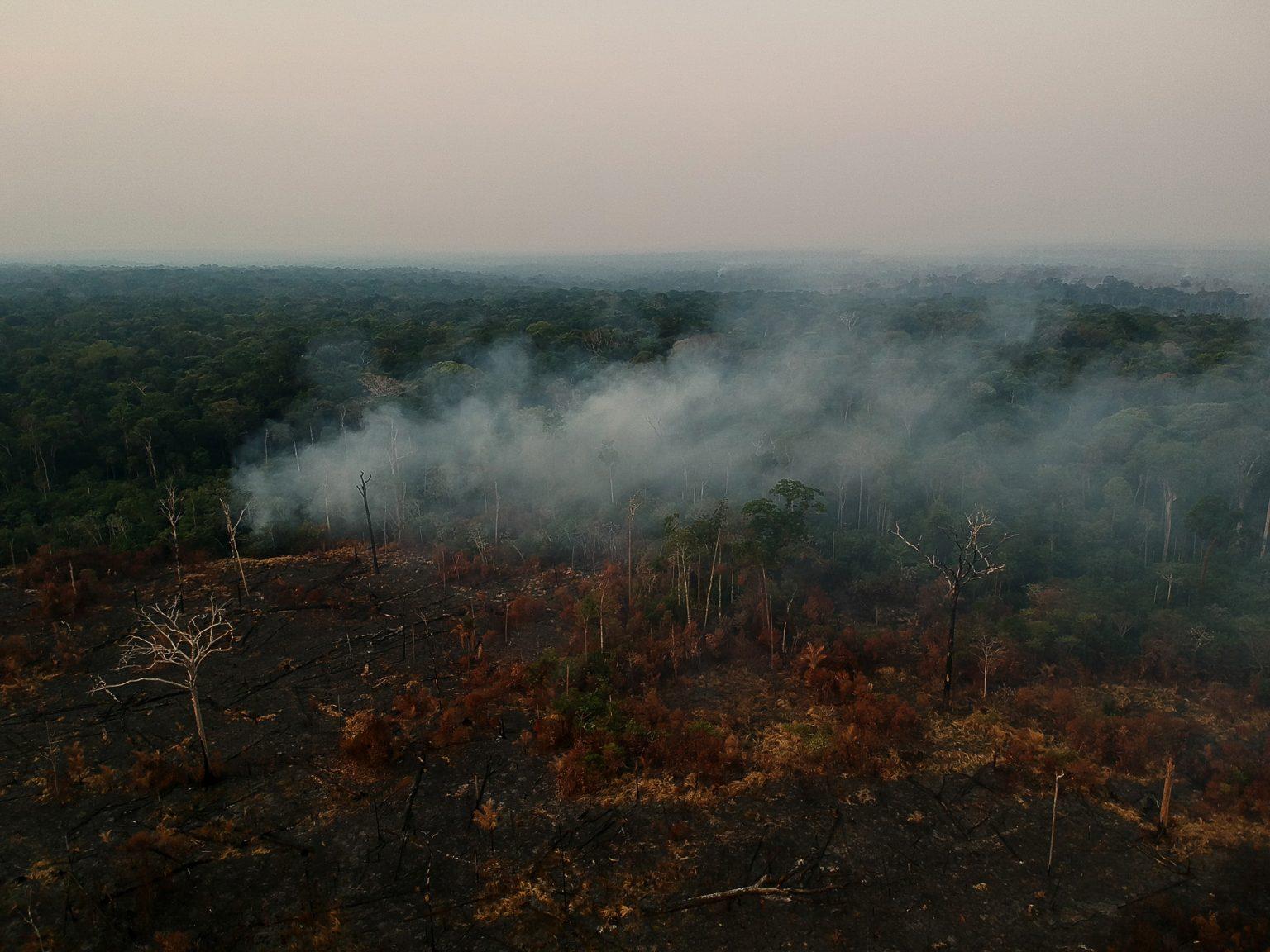 Área de floresta desmatada e queimada perto de Apuí, no sudoeste do Amazonas: para ambientalistas, flexibilização do licenciamento ameaça patrimônio natural (Foto: Bruno Kelly/Amazônia Real - 09/08/2020)