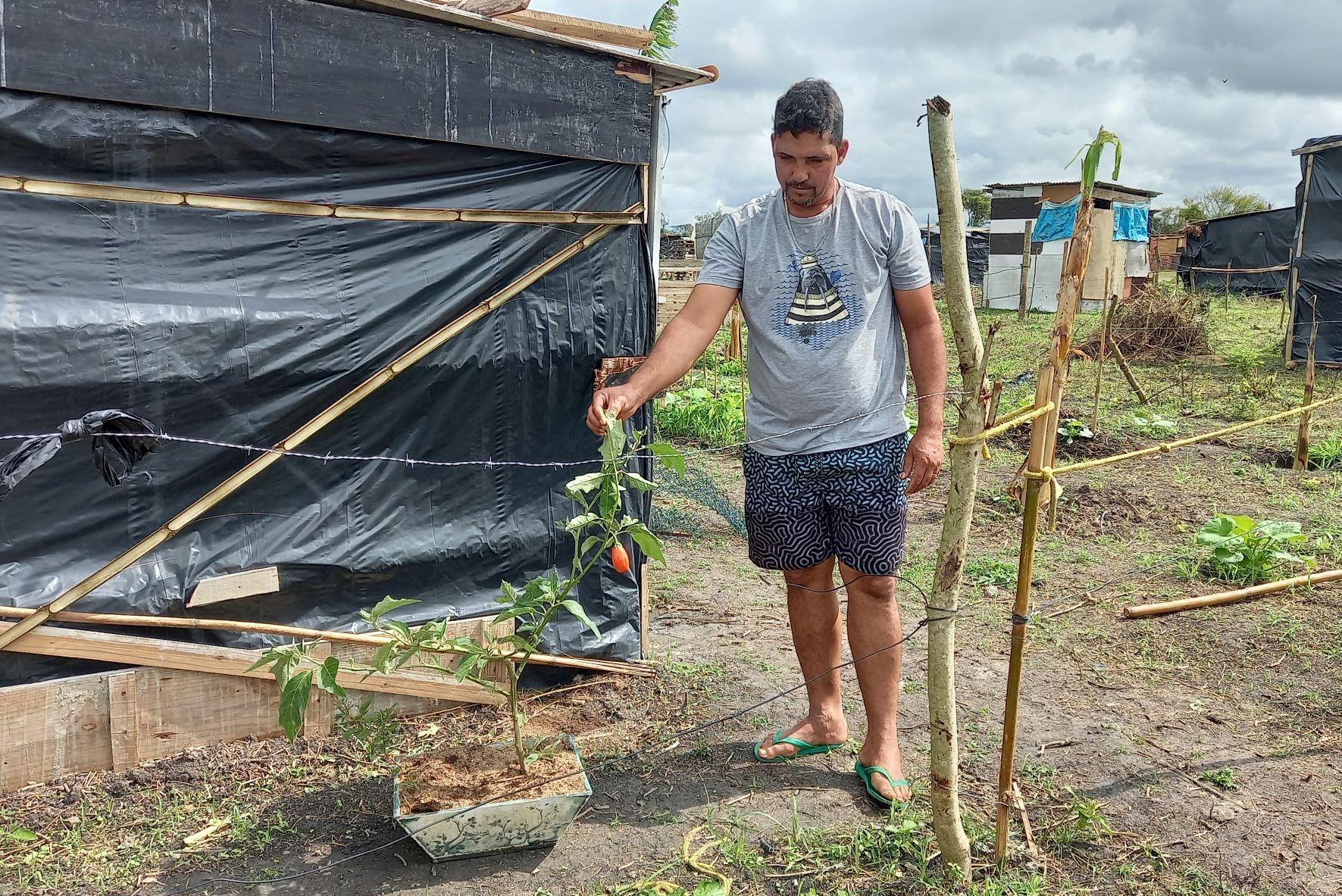 Rodrigo Alves prepara plantação no acampamento: cultivo de quiabo, couve, abóbora, milho, tomate, banana e graviola com base na agroecologia (Foto: Vivi Fernandes de Lima)