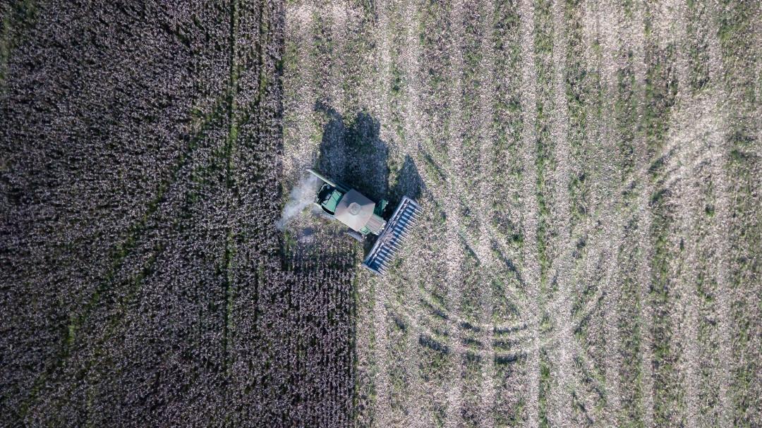Terras vendidas à preço de banana no Cerrado. Foto: Thomas Bauer/ CPT Araguaia-Tocantins