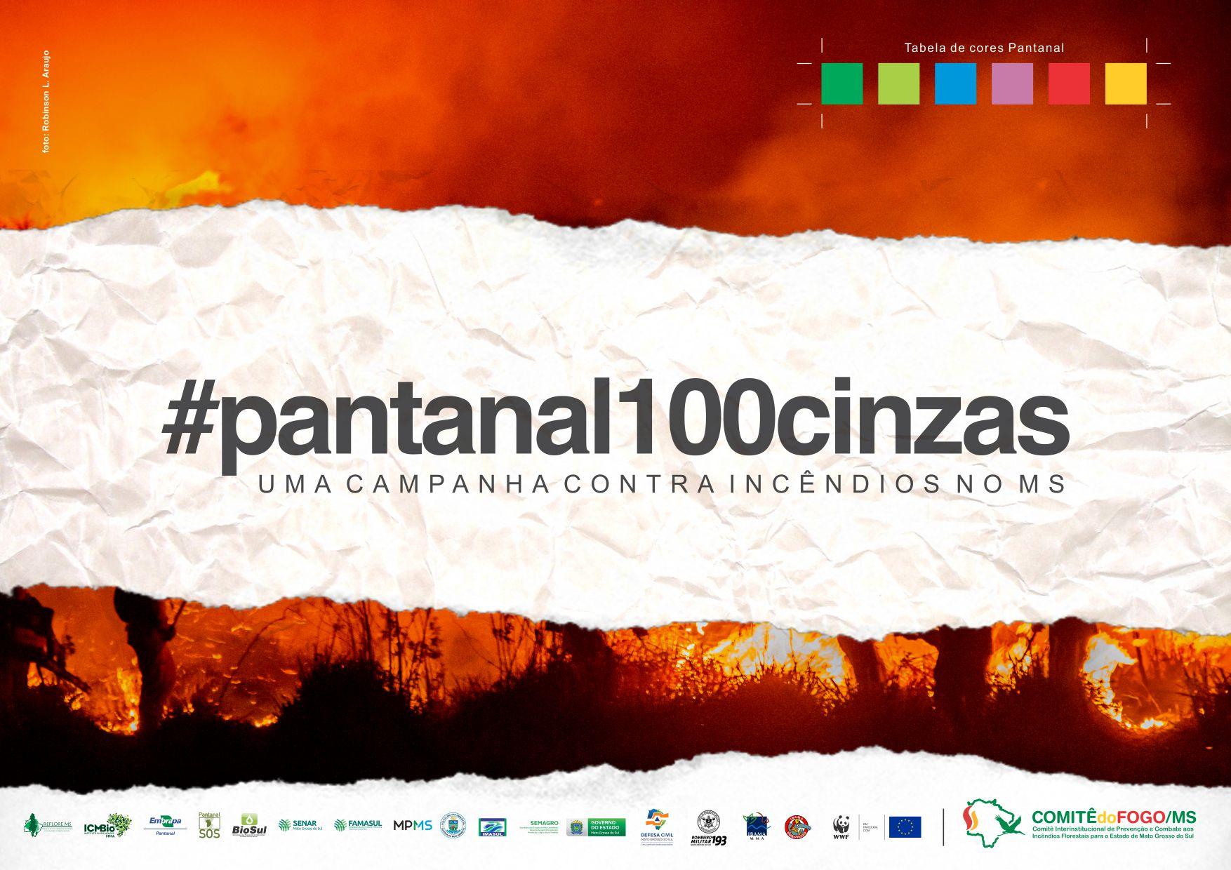 Painel da campanha #Pantanal100cinzas do governo de Mato Grosso: decreto de emergência ambiental e ação de conscientização (Foto: Reprodução)